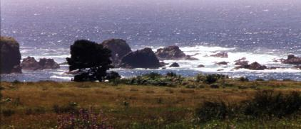 Our Sacred Headlands by Heidi Kraut - 15557 Bytes